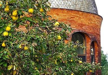 Goetheanum'dan Son Haberler
